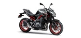 Kawasaki Z900 metallic moondust gray